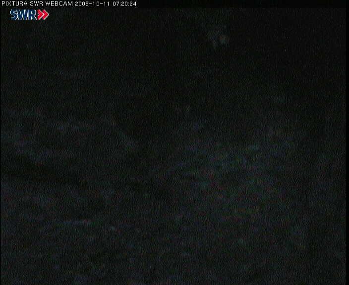 2008-10-11--07-30-01.jpg