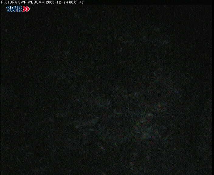 2008-12-24--08-03-01.jpg