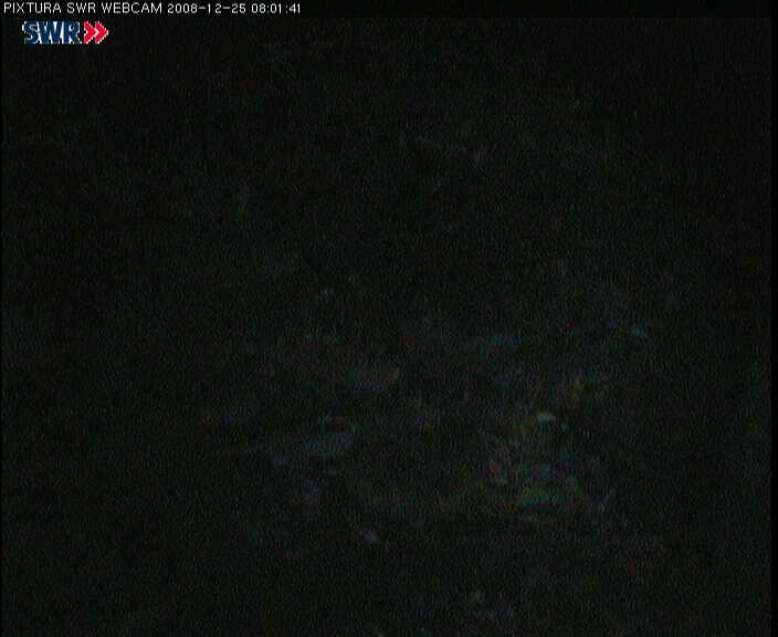 2008-12-25--08-03-01.jpg