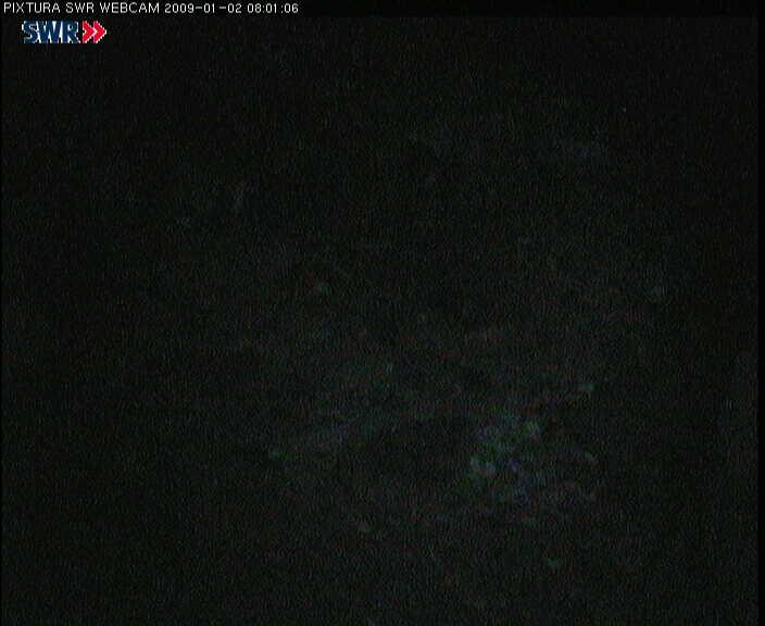 2009-01-02--08-03-01.jpg