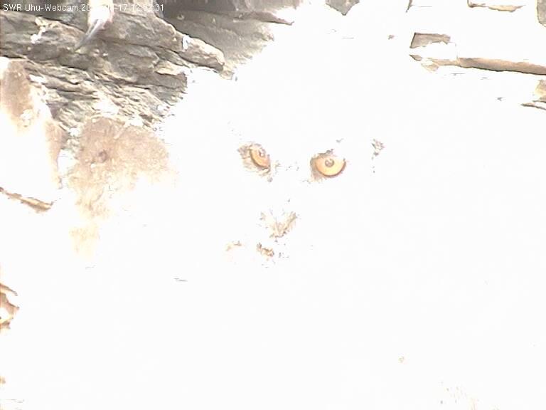 2012-05-17--12-33-01.jpg