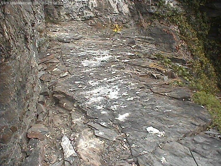 2012-10-29--14-33-01.jpg