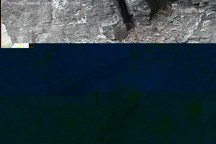 2018-03-05--10-03-01.jpg