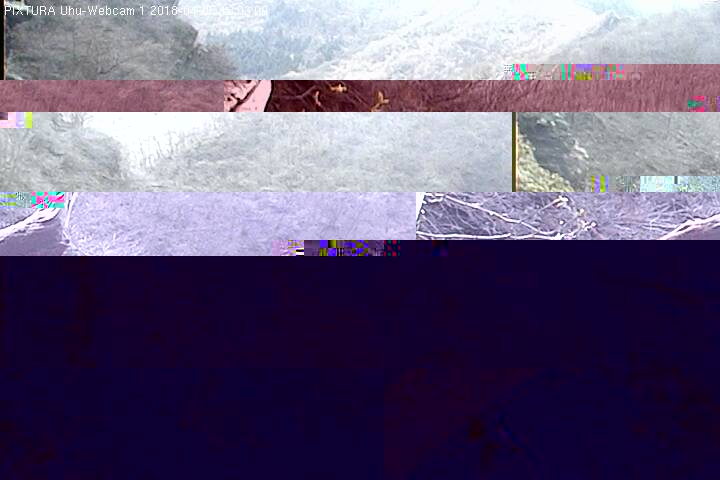 2018-04-05--13-03-01.jpg