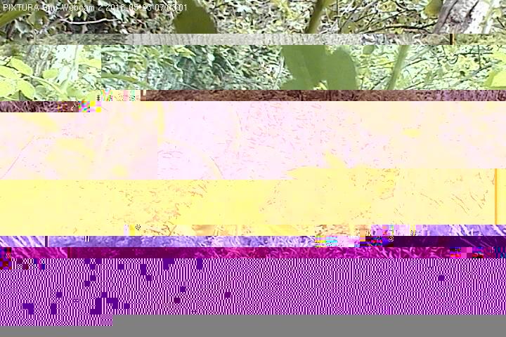 2018-05-23--07-03-01.jpg