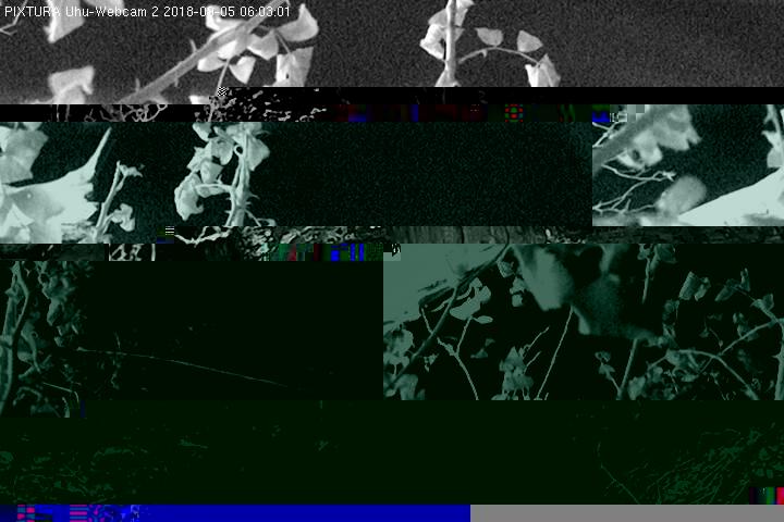 2018-09-05--06-03-01.jpg