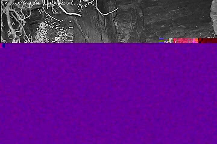 2018-09-22--04-03-01.jpg