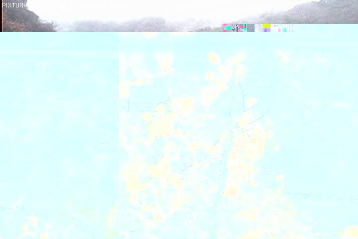 2018-09-23--08-03-01.jpg