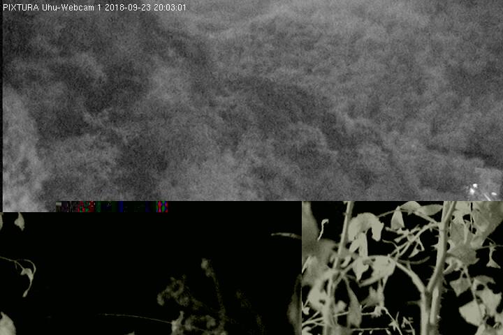 2018-09-23--20-03-01.jpg