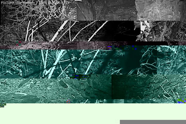 2018-10-05--05-03-01.jpg